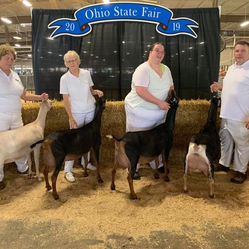 2019 Best Herd & Governors Award