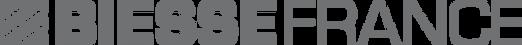 Logo Biesse France.png