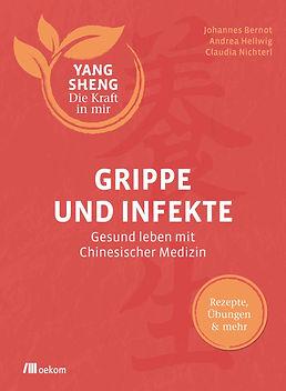 Grippe_Infekt_Bernot_Yang Sheng_Chinesis