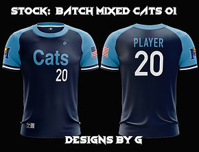 cats 01.jpg