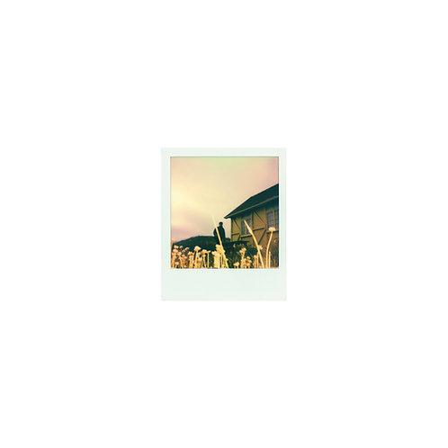 "Pre Order - 12"" Limited Edition Vinyl"