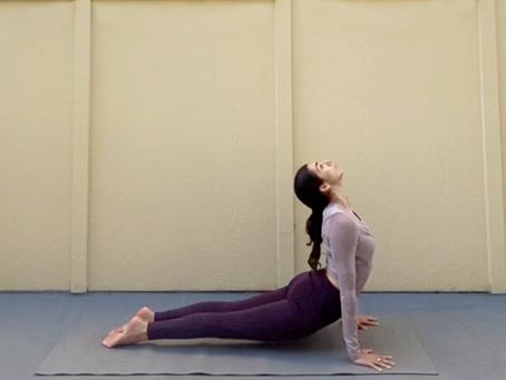 Upward Facing Dog (Urdhva Mukha Svanasana)   Yoga Fundamentals