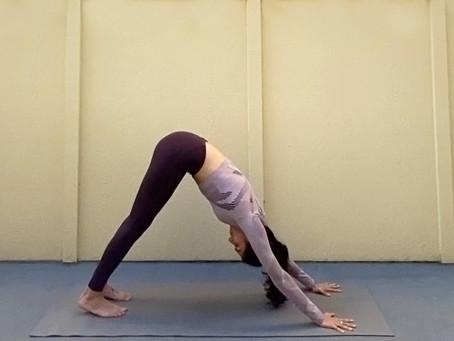 Downward Facing Dog (Adho Mukha Svanasana)   Yoga Fundamentals