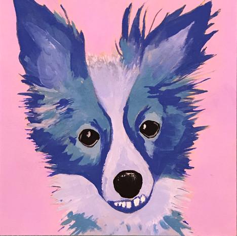 Amy Sedaris the Dog