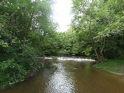riviere arnon - pêche en rivière - crédi