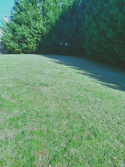 Lawn Care2