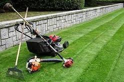 One-time Premium Lawn Service Quote