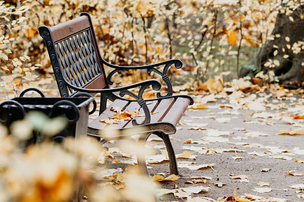 fallen-leaves-laying-on-a-bench-in-an-au