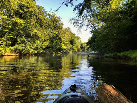 Climb into the canoe for FABulous trip on the Duck River