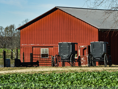 Take a step back in time and enjoy Ethridge's Amish Country