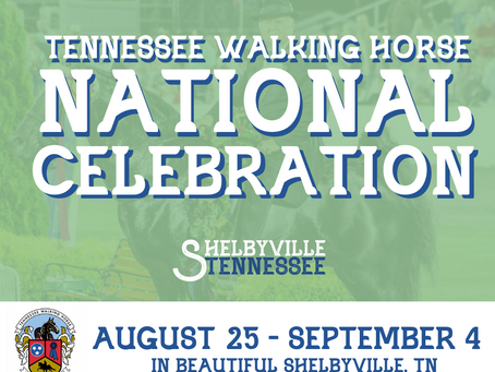 Experience an 83-year tradition, the Tennessee Walking Horse National Celebration