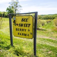 Bee Sweet Berry Farm