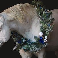Christmas-6026_edited.jpg