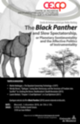 AfficheBlackPanther.jpg