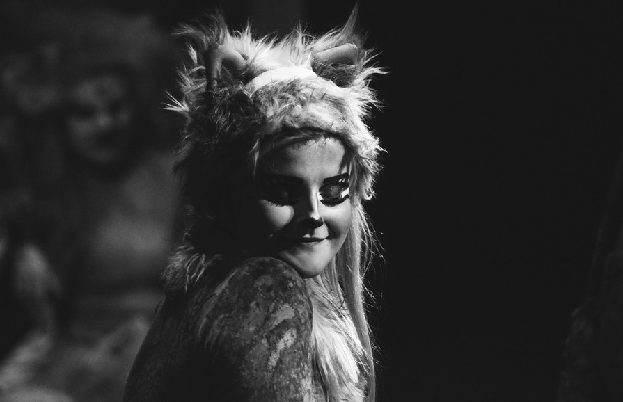 Cats - New Zealand Tour - Jellylorum