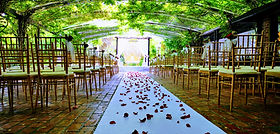 Outdoor Wedding Decorations Melbourne 20