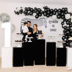 Zeebra Themed Themed -1st Birthday Party