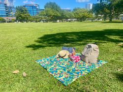 furoshiki-picnic-03.jpeg