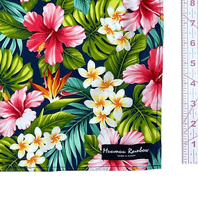 hibiscus-01_03.jpg