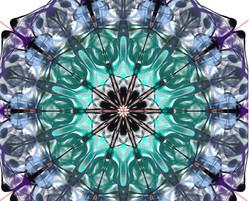 CylieRadial_edited.jpg