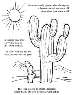 sci saguaro