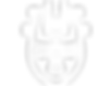 Iron Age Face - The Mysterium Logo