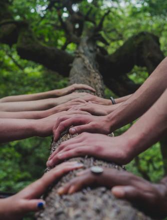 Fortbildung: Kommunaler Klimaschutz ab 9. Juli 2021