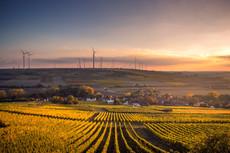 """Die Zukunft der Energiewende. Lokal. Regional. International."" Web-Seminar am 24. Juni 20"