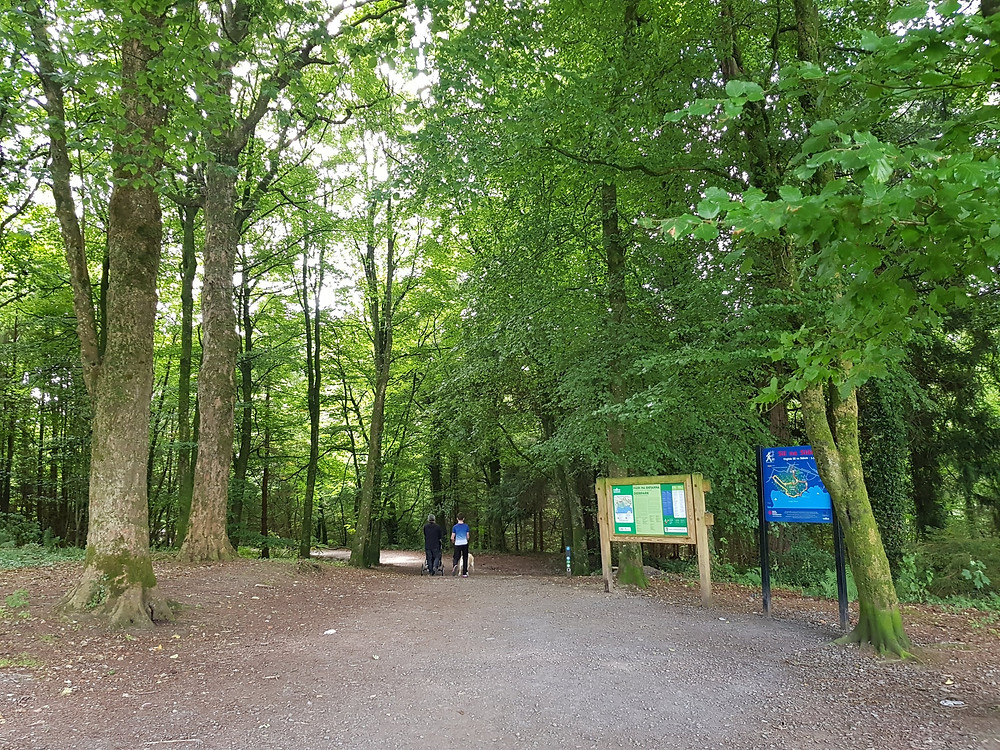 A notice board with map greets visitors to Deerpark Forest