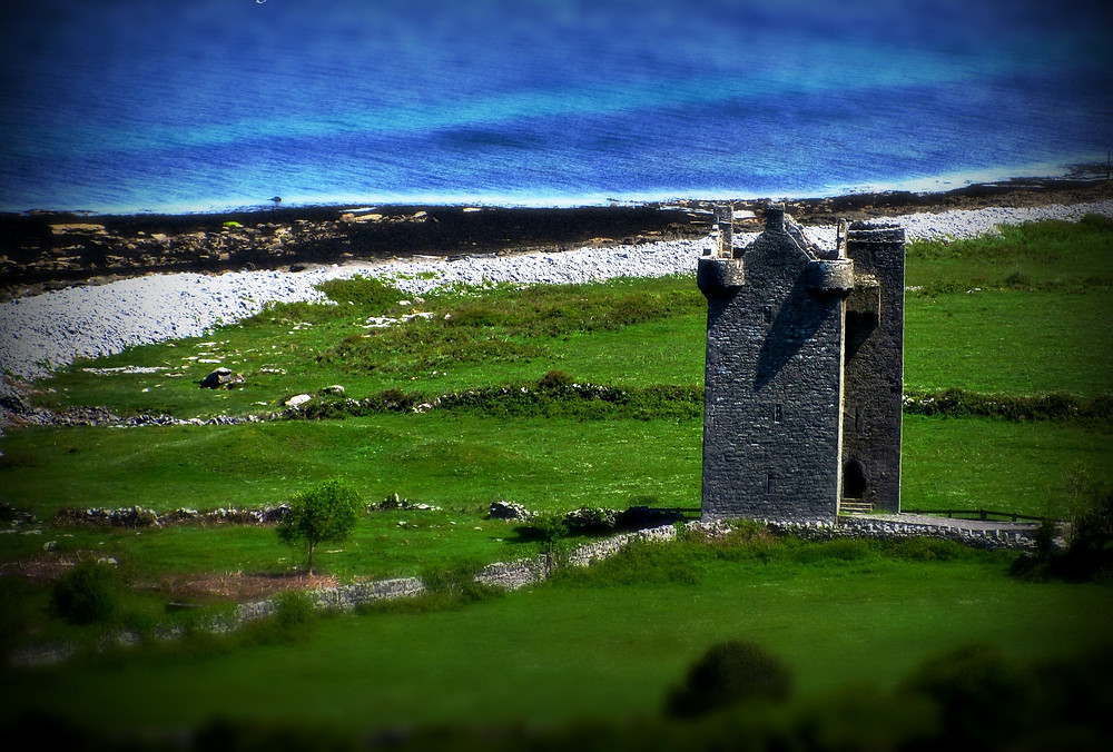 Castle tower-house with green fields, rolling blue sea and stony shore covered with black seaweed in background.