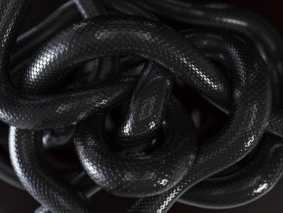 The Serpent in Irish Mythology