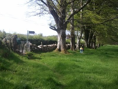 Gate at Heapstown Cairn