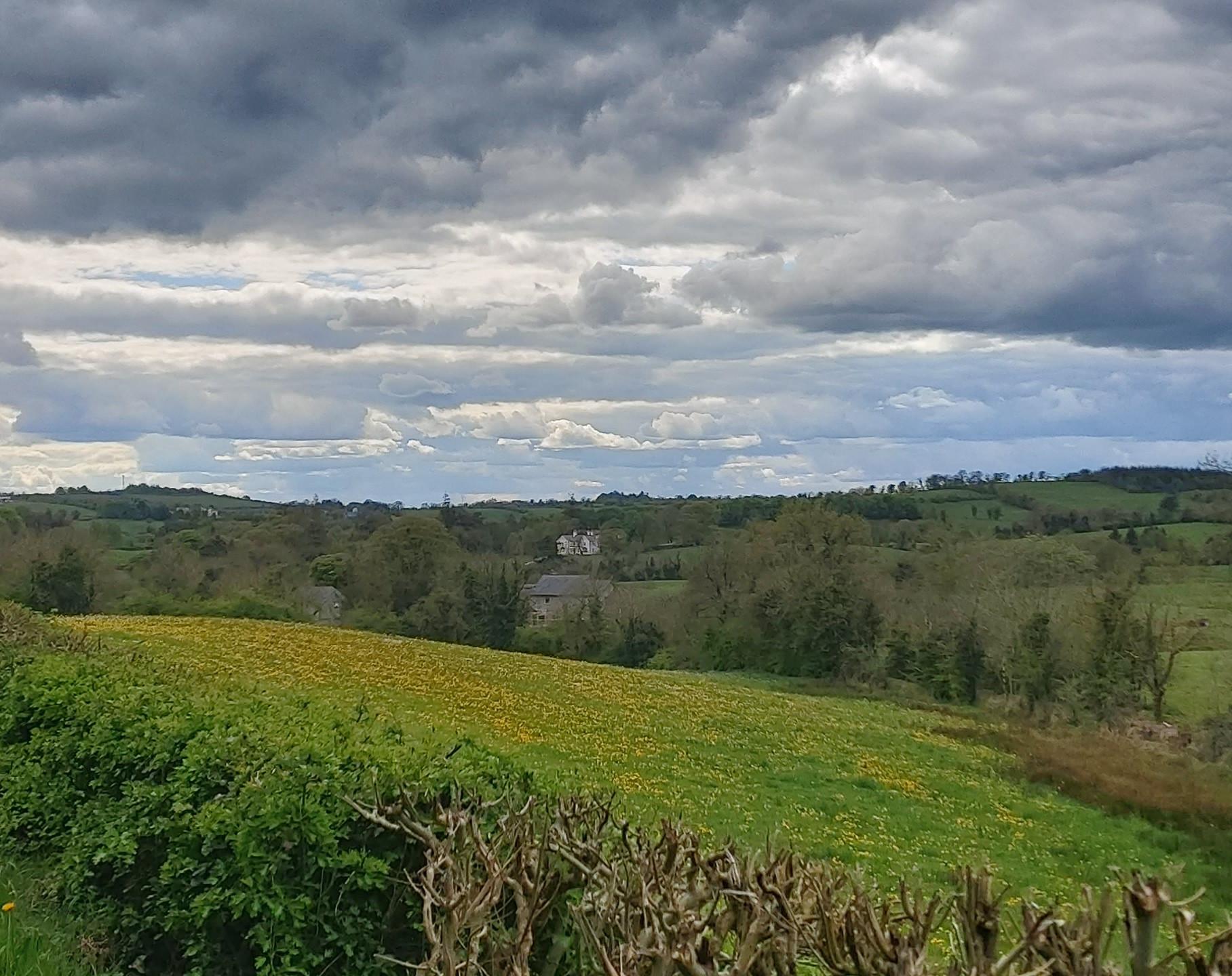 wide open landscape