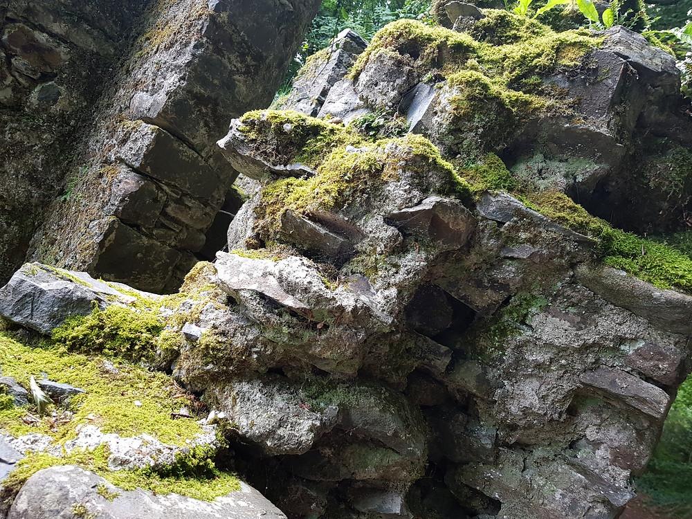 Texture… rock, moss and lichen.
