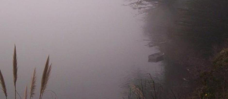 Irish Mist | A Poem