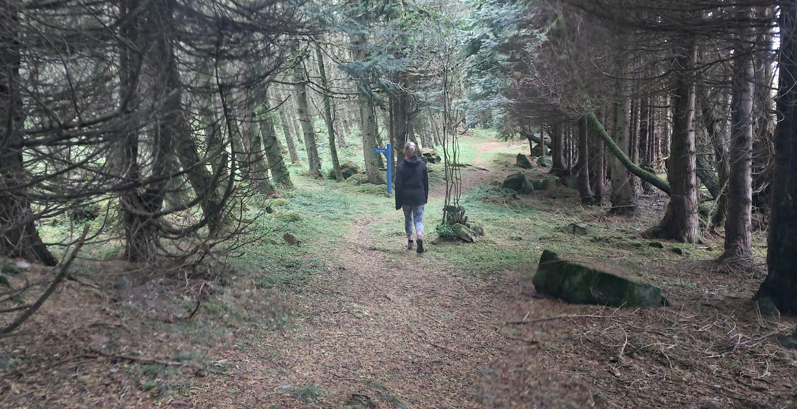 In search of Cairn Dolmen