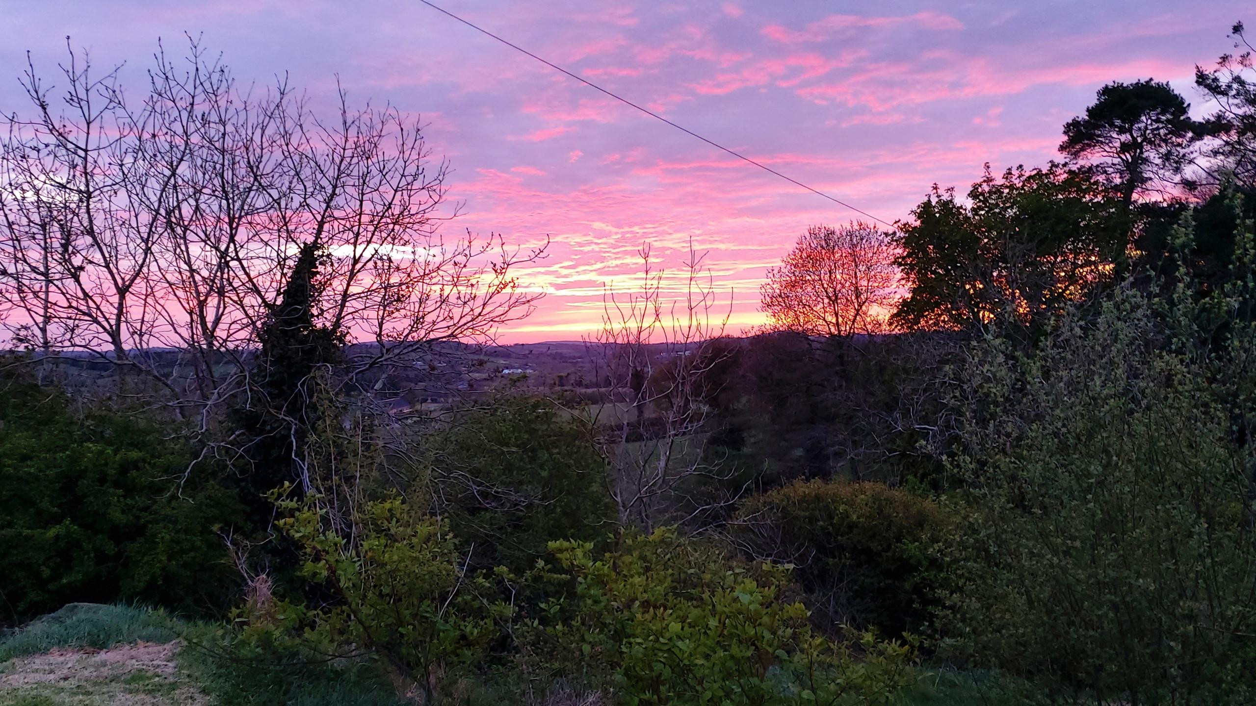 Sunset over my garden