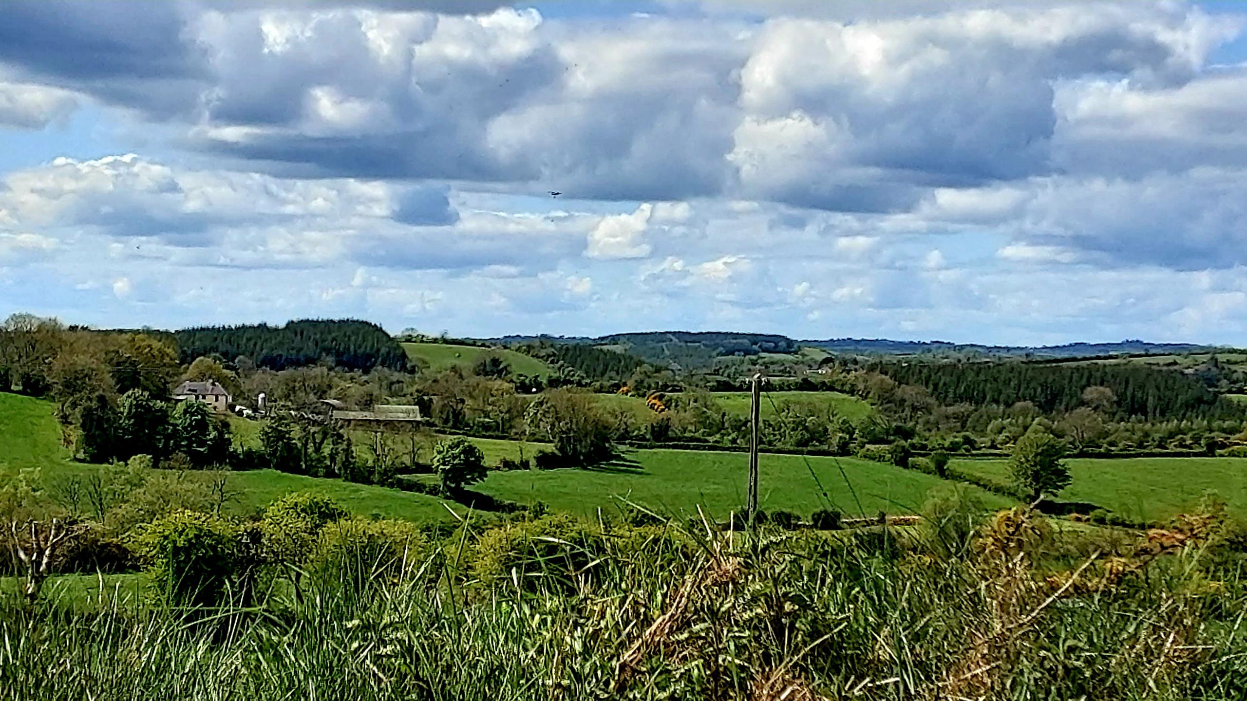 rolling Cavan countryside