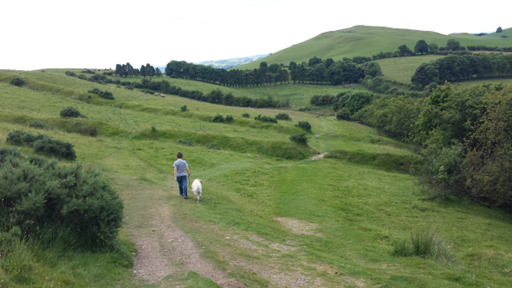 Heading back down. You can clearly see the embankments and ditches in this image.