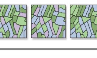 Análisis de patrones espaciales