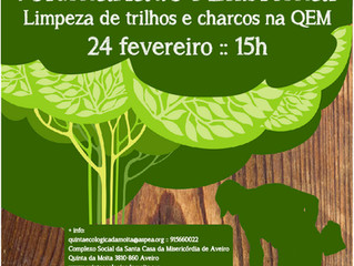 Voluntariado Ambiental na QEM