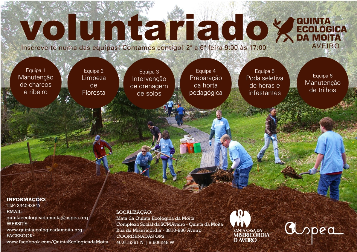 voluntariado2016