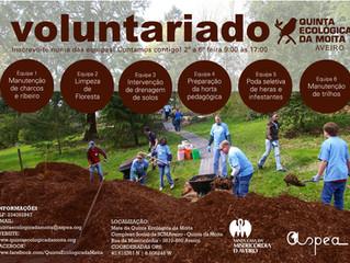 Procuram-se voluntários apaixonados pela natureza