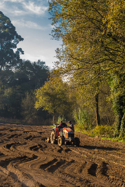 QEM - Adote uma horta na quinta
