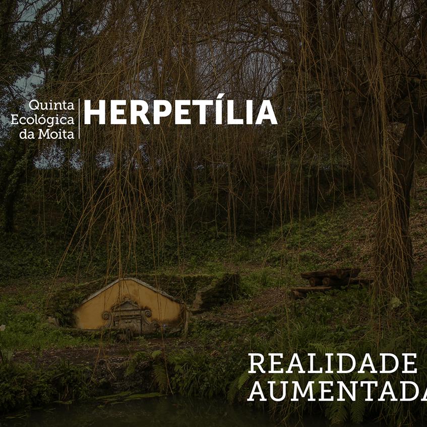 QEM - Projecto Herpetília 1