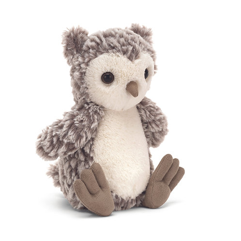 Barney the Owl Chick