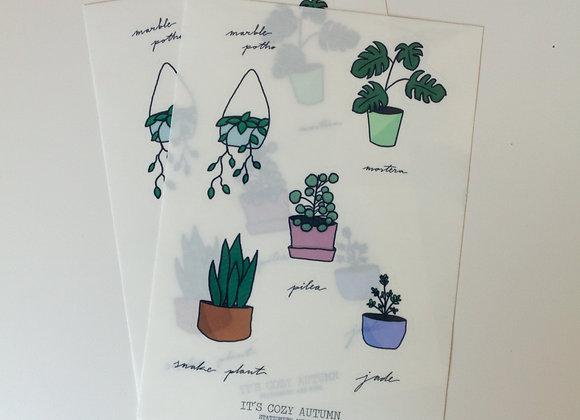 interior plants   clear sticker sheet