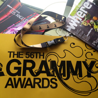 Grammy Awards All Rights Reserved