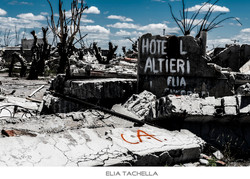 Altieri-EliaTachella-2014.jpg