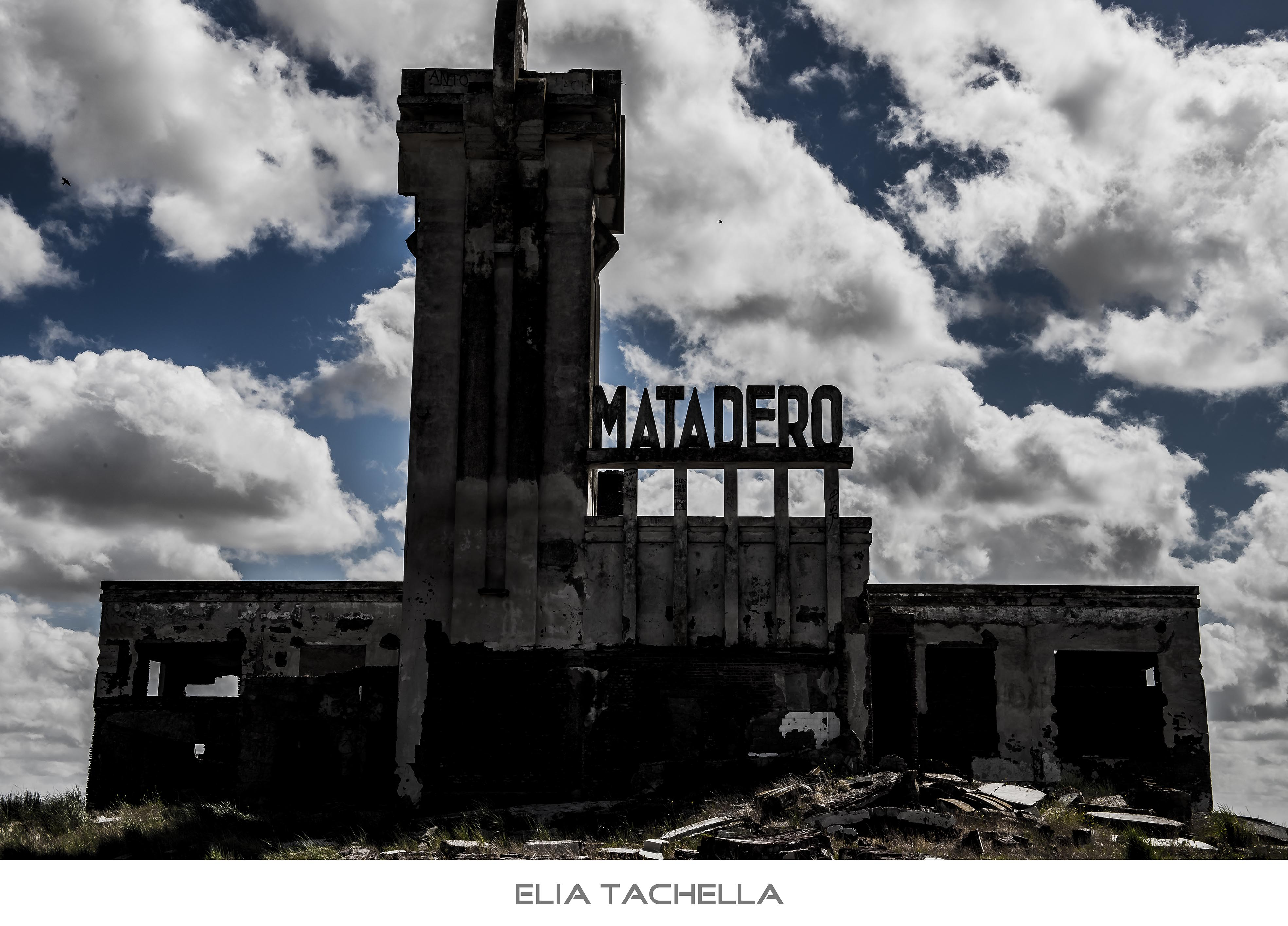 Matadero-EliaTachella-2014.jpg